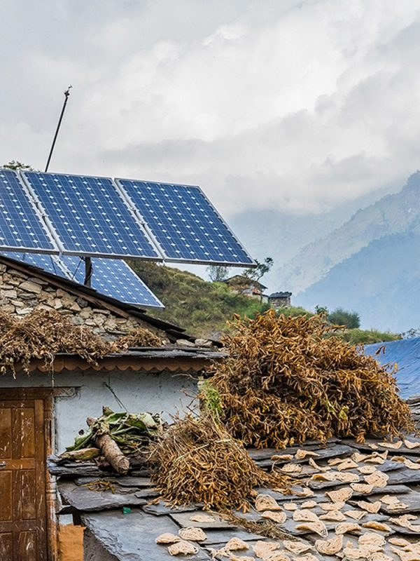 Ideal-Life-Project-Solar-Power-800x1000-1